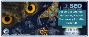 Mariposas, aves, buho, SEO, SEO/BirdLife, Excursión, Noche
