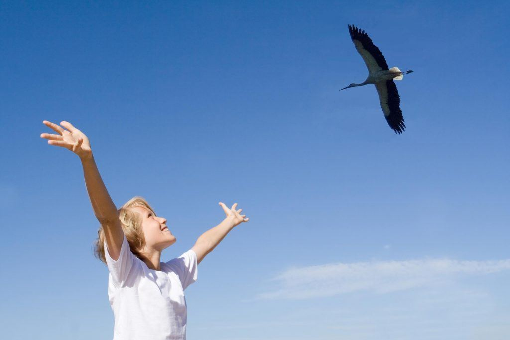 BirdLife acerca la naturaleza a la gente y la involucra en la conservación de su entorno más cercano ©BirdLife