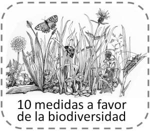 10 medidas bio